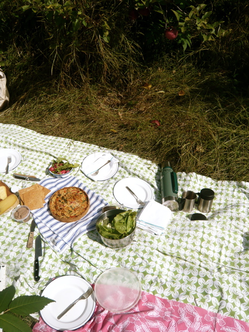 picnic with red pepper tart